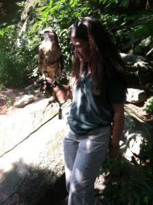 Meeting-a-Hawk